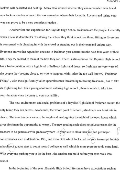 bayside high school freshman expectations essay  sydneys english  reflection